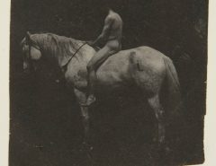 Thomas Eakins: «Billy», el caballo de Samuel Eakins. Hirshhorn Museum and Sculpture Garden; Smithsonian Institution